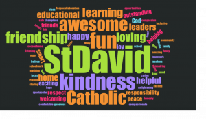 What do St. David's students think about their school?